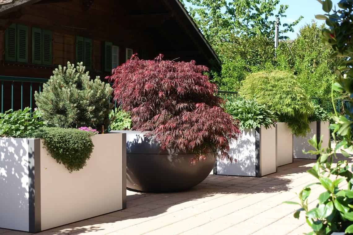 pflanzengef sse f r aussen niesen g rten gmbh. Black Bedroom Furniture Sets. Home Design Ideas